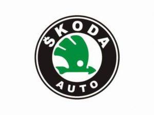 Ремонт автомобилей Шкода в Вологде